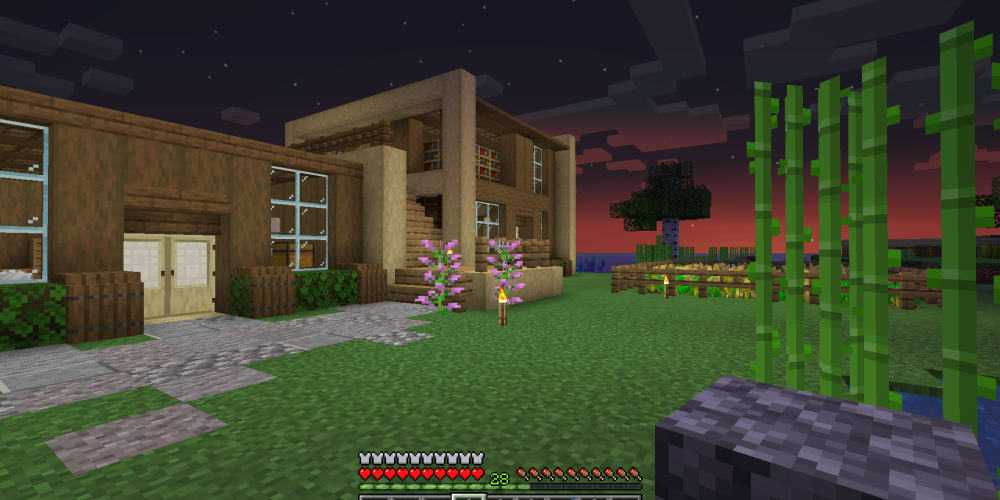 Minecraft PS4 Servers